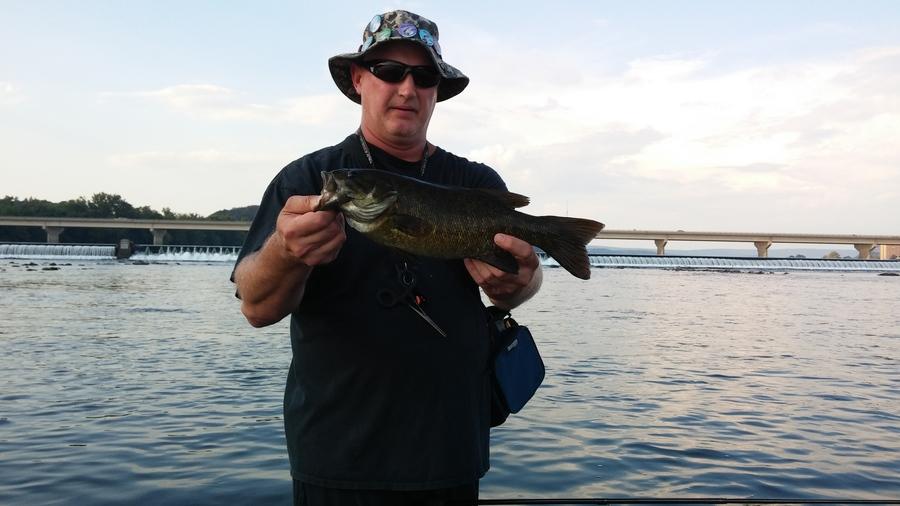 Susquehanna river smallies fishing talks for Susquehanna river fishing