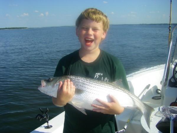 Lake texoma fishing report july lure bite is on for Lake texoma fishing report