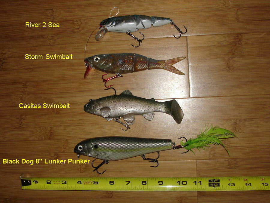 Which type of fishing lure is good for which fish for Types of fishing lures