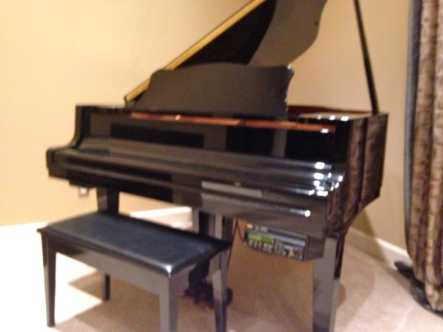 any idea how much i can sell our yamaha baby grand
