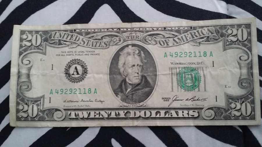 How to Make a Dollar Bill Rose 7 Steps with Pictures