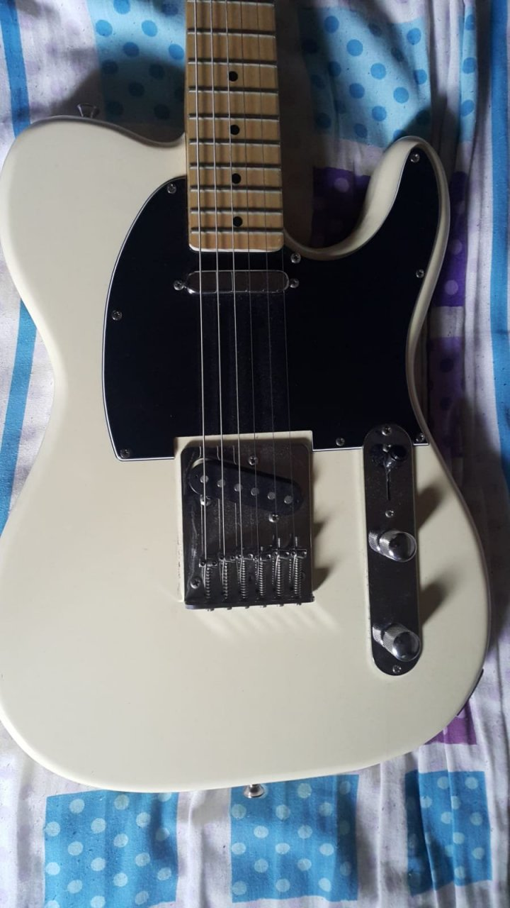 my electric guitar fake really z8170135 axe central