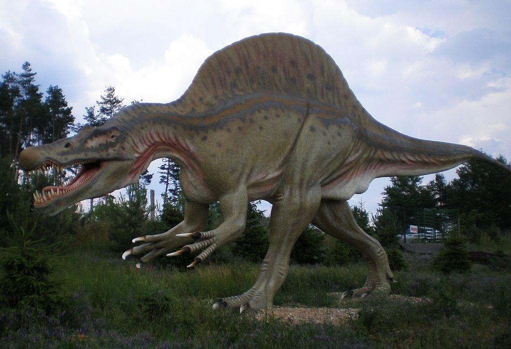 Spinosaurus_Tierpark_Germendorf-v3g7fevbnb.jpg