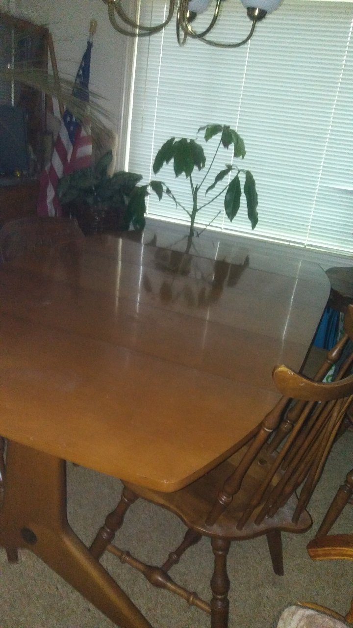 I Have A Brickwede Dining Table And Hutch That I D Like To