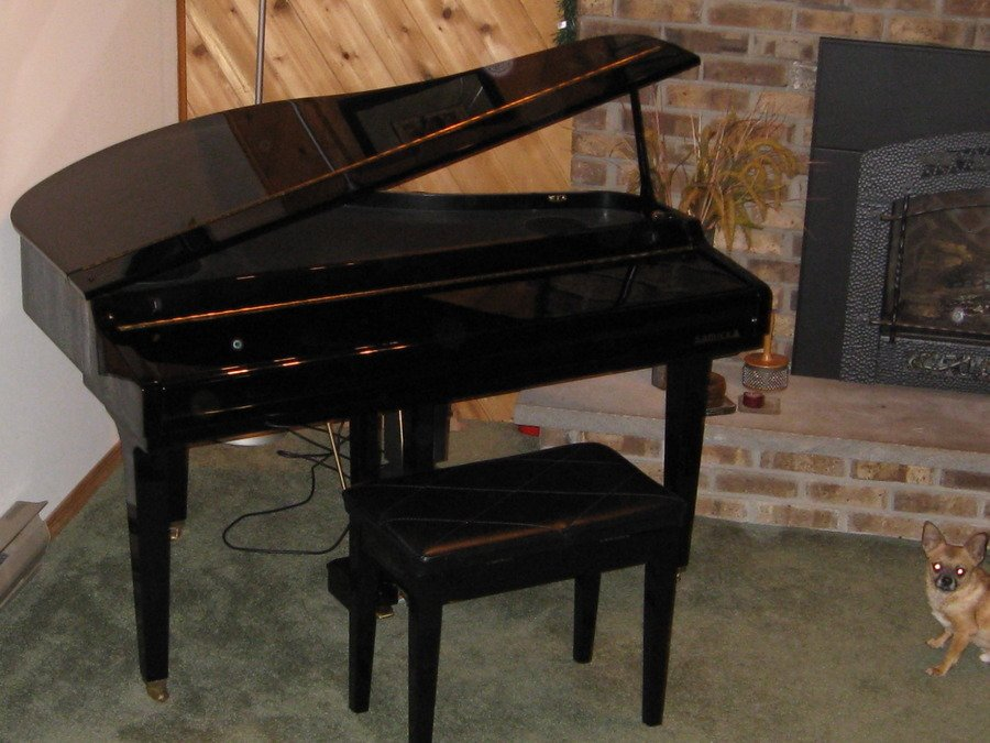How Much Is My Samick SXP-511 Baby Grand Digital Piano ...