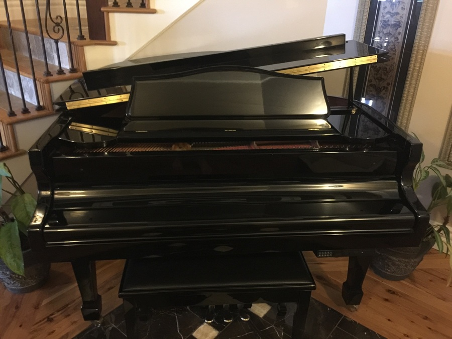 We Have A Baby Grand Samick Sig 50 Pd With Ebony Polish ...
